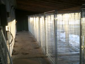 Small Dog Outdoor Kennels